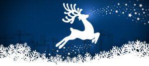 Reindeer Looking Beyond Nose